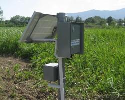 森林生態系統監測
